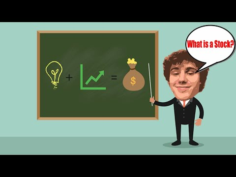 What are Stocks? How Do Stocks Work? Trading 101 w/ Camden!