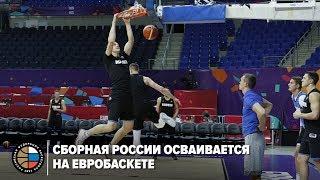 Сборная России осваивается на Евробаскете
