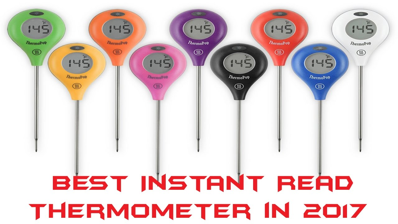 best instant read thermometer in instant read thermometer review