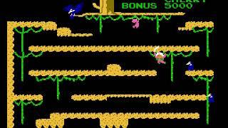 [TAS] NES Super Arabian by klmz in 01:47.86