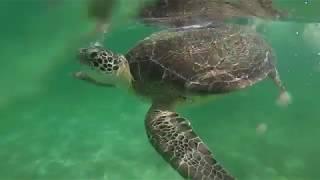 Mexico, Riviera Maya, 2018 - GoPro Hero