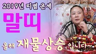 [인천점집][신점사주풀이]2019년 띠별 운세_말띠-올해 재물상승입니다~