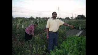 Gardening in Ottawa by Eugene Kabamba