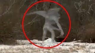 10 Criaturas Misteriosas Grabadas En Video