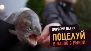 ДОРОГИЕ ПАРНИ: Поцелуй взасос с рыбой