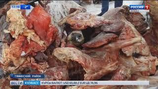 Кузбасские полицейские уничтожили партию опасной говядины