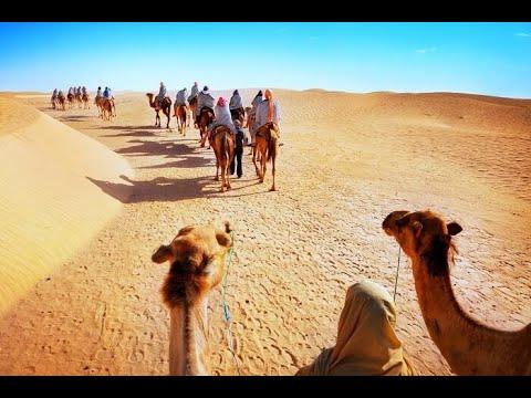 Top 10 Palace in Jaisalmer || Jaisalmer Itinerary || 2Night /3Days