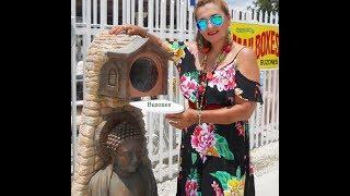 Los Originales, Divertidos, Llamativos, Creativos,   buzones de Correos de Miami ( Estados Unidos )