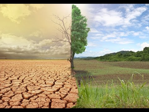New solutions for coping with climate change - VTC10 Netviet