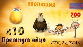 Angry birds Evolution. Открываем 10 премиум яиц + Эволюция Клетуса