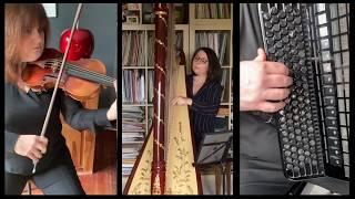 PHALAENA Sonata Fm K519 D  Scarlatti