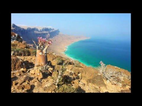 The beauty of Socotra   جمال سقطرى