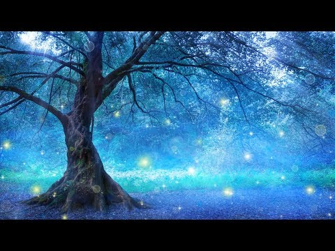 """Beautiful Relaxing Peaceful Meditation and Yoga Music """"Ancient Forest"""" Tim Janis"""