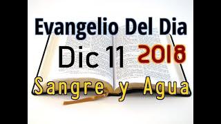 Evangelio del Dia- Martes 11 Diciembre 2018- Ya Viene- Sangre y Agua
