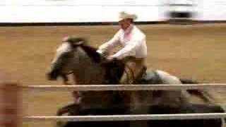 Calgary Stampede Working Cow Horse Competition 2007