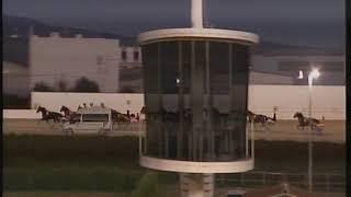 Vidéo de la course PMU PREMI GUIEM COLL