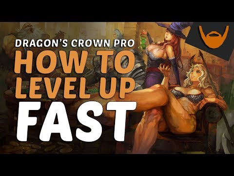 Dragon's Crown Pro - How to Level Up Fast / Easy EXP