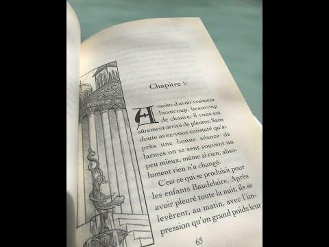 3 - Les Désastreuses Aventures Des Orphelins Baudelaire, Chapitre 5