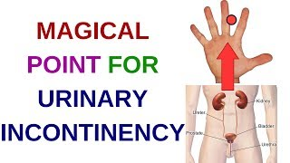... you can learn very effective acupressure point for urinary probl...