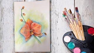 Уроки рисования! Как нарисовать орхидею акварельными карандашами! #Dari_Art