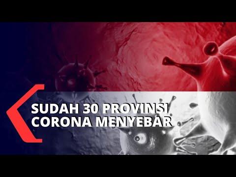 Corona Sudah Menyebar ke 30 Provinsi di Indonesia