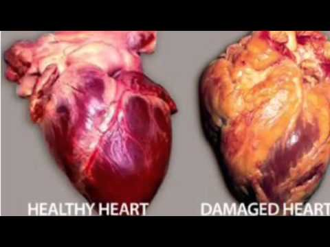 effect of smoking on cardiovascular system pdf