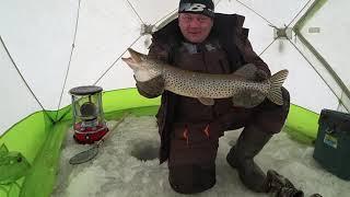 Вот на что ловится щука Зимняя рыбалка