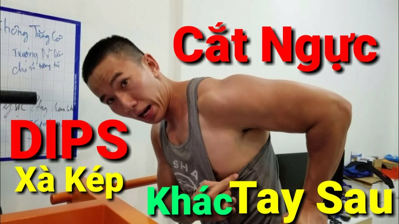 DIPS Xà Kép Tập NGỰC Khác Xà Kép Tay Sau Như Thế Nào – HLV Ryan Long Fitness