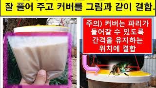 식당파리 축사 파리잡는 법 파리지옥 사용설명 동영상