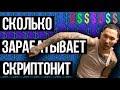 СКОЛЬКО ЗАРАБАТЫВАЕТ СКРИПТОНИТ ЕЖЕМЕСЯЧНЫЙ ДОХОД mp3