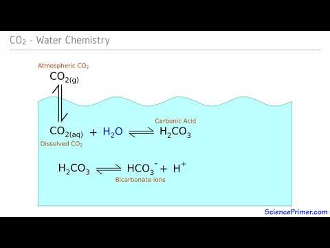 Carbonate Buffering
