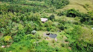 4-Acres of Self-Sufficiency Inside This Permaculture Paradise!