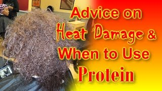 #585 - Advice on  HEAT DAMAGE & WHEN to Use PROTEIN