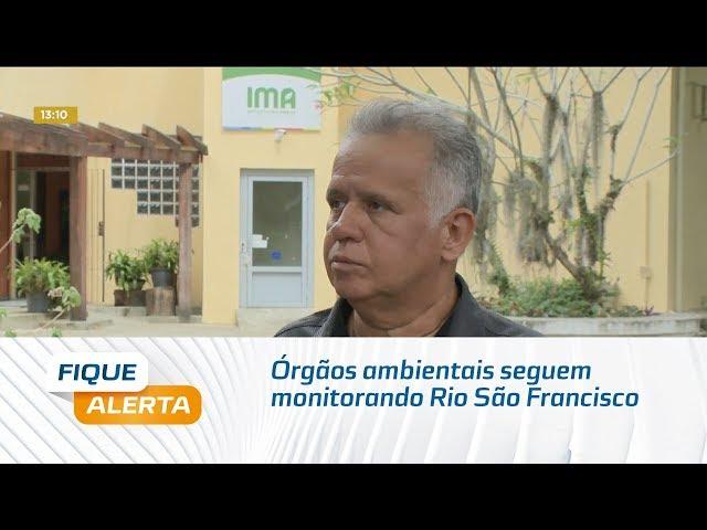 Órgãos ambientais seguem monitorando situação na foz do Rio São Francisco