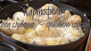 Молодой картофель под сливочно-грибным соусом | Сливочный соус с грибами