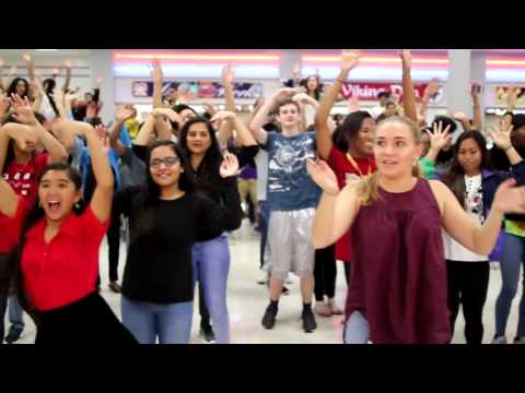 Dulles High School 2017 Flash Mob