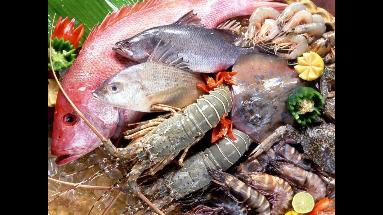 Более тридцати разновидностей рыбы представили на выставке-ярмарке