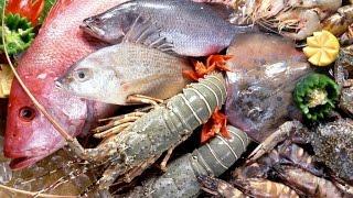"""Более тридцати разновидностей рыбы представили на выставке-ярмарке """"Рыбак Камчатки"""""""
