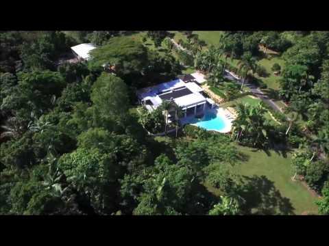 Rainforest Estate Mossman