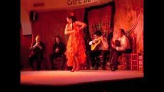Фламенко, Мадрид, Испания Flamenco, Madrid, Spain