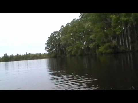 LM Bass Down East in North Carolina