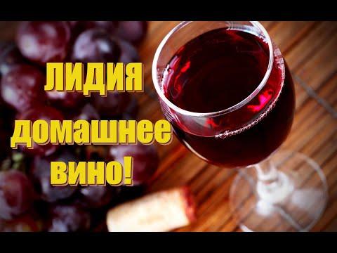 Вино из винограда лидия в домашних условиях простой рецепт с перчаткой