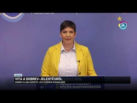 Vita a Dobrev-jelentésről thumbnail