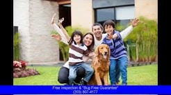 Exterminator Norwalk Ct: Free Inspection and 100% Bug free Guarantee Call Now