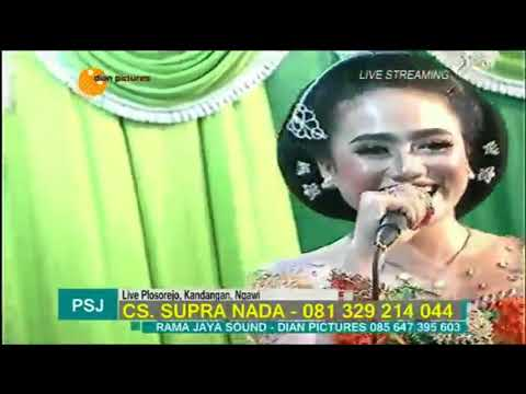 Stel Kendo   Erin Sabrina   Supra Nada Live Ngawi 2017