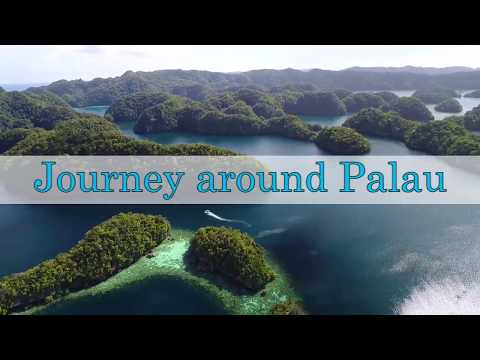 Journey around Palau