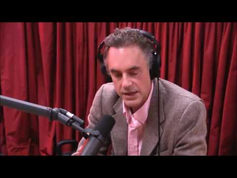 Jordan Peterson - On Suffering, Resentment, and the uselessness of Universities in 2016