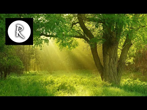 8 Hours Celtic Music with Rain  Soothing Background Music, sleep Music