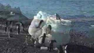 Antarctica in 5 minutes
