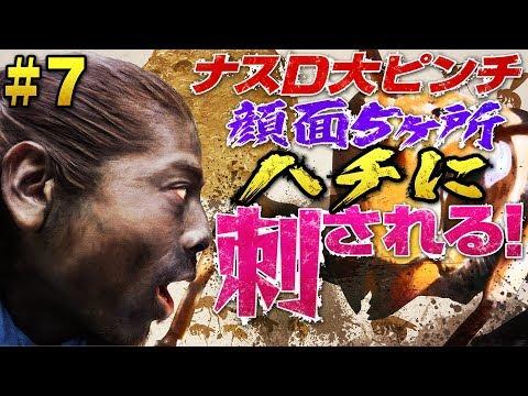 【#7】ナスD大ピンチ顔面5ヶ所ハチに刺される!編